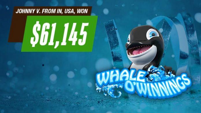 Cafe Casino Whale-O-winnings
